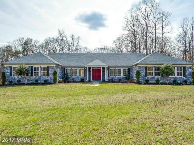 336 Windermere Drive, Stafford, VA 22554 (#ST10015110) :: Pearson Smith Realty