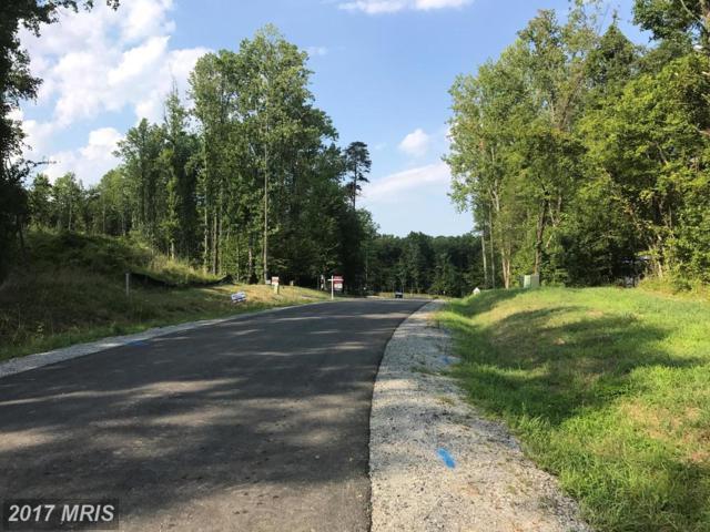 Aiden Drive, Fredericksburg, VA 22406 (#ST10020561) :: LoCoMusings