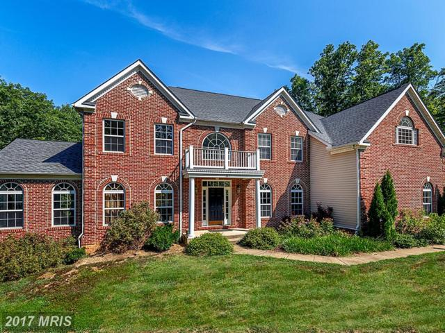 149 Sentinel Ridge Lane, Stafford, VA 22554 (#ST10022092) :: Pearson Smith Realty
