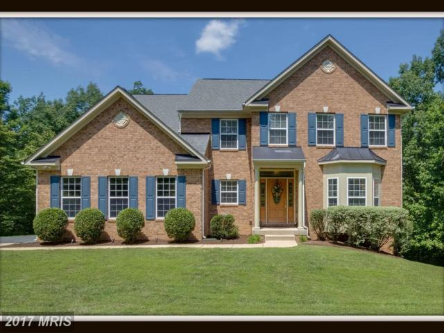 390 Gentle Breeze Circle, Fredericksburg, VA 22406 (#ST10024322) :: Pearson Smith Realty