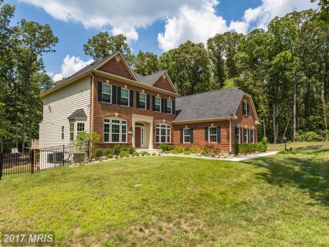 177 Herdmont Drive, Fredericksburg, VA 22406 (#ST10025632) :: Pearson Smith Realty