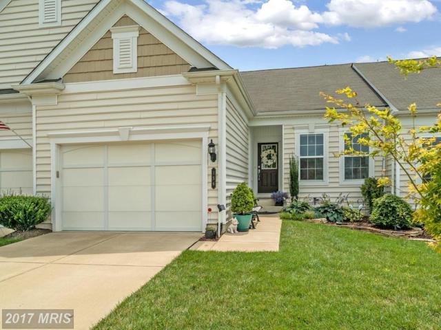 156 Castle Hill Drive, Fredericksburg, VA 22406 (#ST10028218) :: Pearson Smith Realty