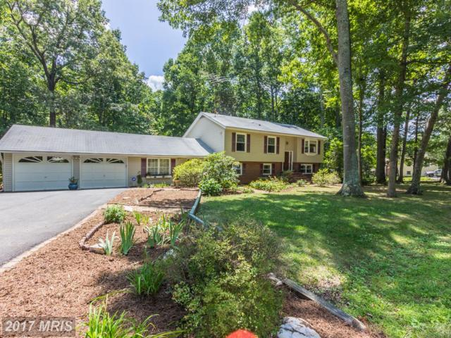 469 Cropp Road, Fredericksburg, VA 22406 (#ST10028339) :: Pearson Smith Realty