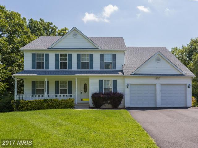 4 Cathedral Lane, Stafford, VA 22554 (#ST10029587) :: Pearson Smith Realty