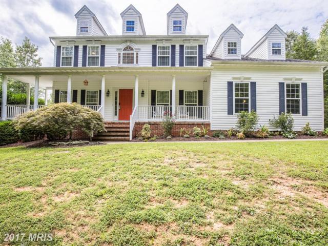 156 Revell Road, Fredericksburg, VA 22405 (#ST10030112) :: Pearson Smith Realty