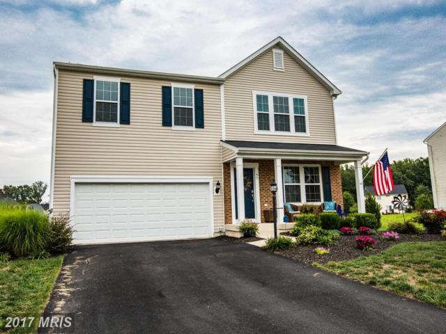 47 Ivy Spring Lane, Fredericksburg, VA 22406 (#ST10033113) :: RE/MAX Cornerstone Realty