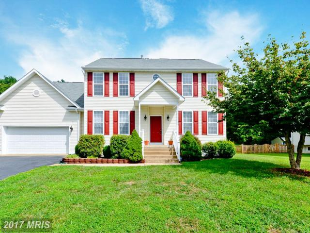 64 Cannon Ridge Drive, Fredericksburg, VA 22405 (#ST10034656) :: Pearson Smith Realty