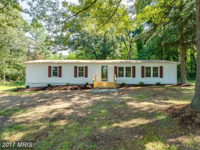 162 Clark Patton Road, Fredericksburg, VA 22406 (#ST10034807) :: Pearson Smith Realty
