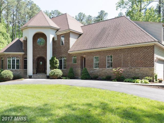 3 Beaver Ridge Road, Stafford, VA 22556 (#ST10037256) :: Pearson Smith Realty