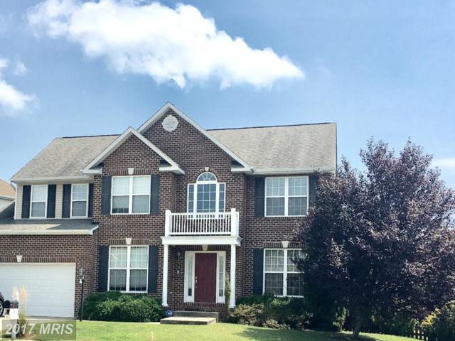 5 Daffan Court, Fredericksburg, VA 22405 (#ST10037408) :: Colgan Real Estate