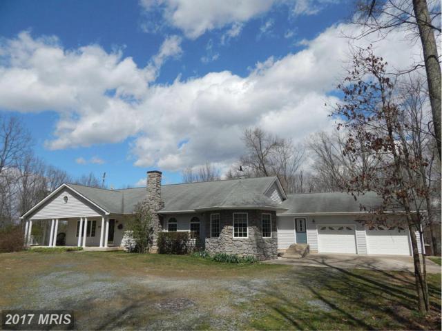65 Sycamore Ridge Road, Fredericksburg, VA 22405 (#ST10039188) :: LoCoMusings