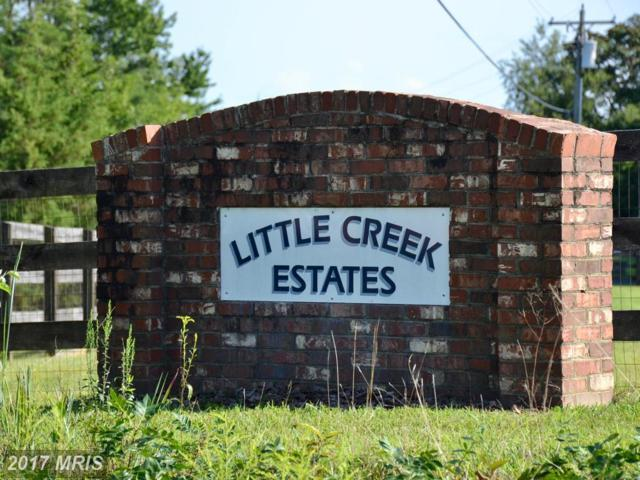 13 Little Creek Lane, Fredericksburg, VA 22405 (#ST10040116) :: Pearson Smith Realty