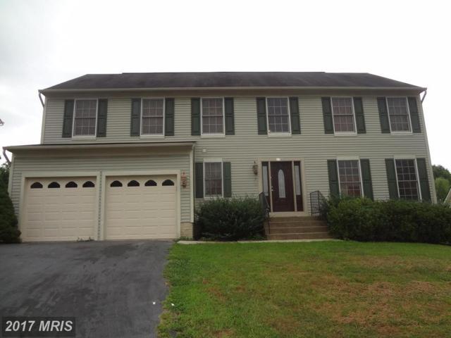 89 Basalt Drive, Fredericksburg, VA 22406 (#ST10040519) :: Pearson Smith Realty