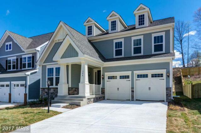 0 Apricot Street, Stafford, VA 22554 (#ST10042339) :: Keller Williams