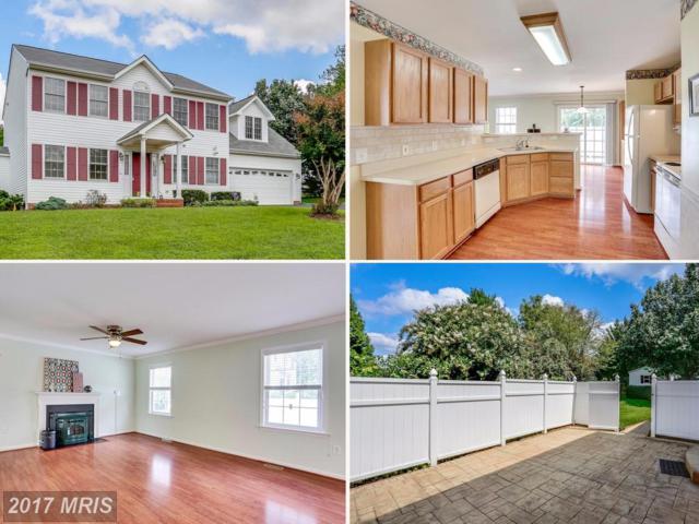 5 Cannon Ridge Drive, Fredericksburg, VA 22405 (#ST10042430) :: Pearson Smith Realty