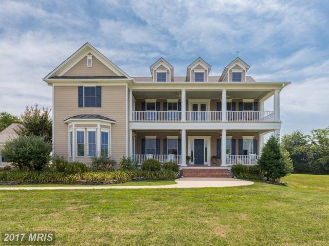 84 Ironwood Road, Fredericksburg, VA 22405 (#ST10043850) :: Pearson Smith Realty