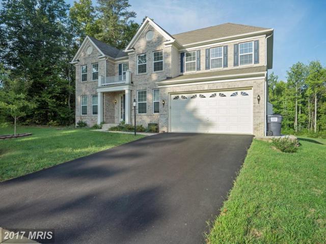 29 Berea Knolls Drive, Fredericksburg, VA 22406 (#ST10046382) :: Pearson Smith Realty