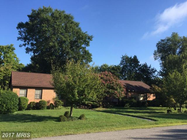11 Braxton Lane, Fredericksburg, VA 22405 (#ST10050260) :: LoCoMusings