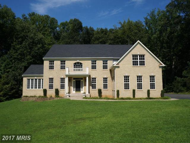 48 Falling Creek Drive, Stafford, VA 22554 (#ST10050718) :: Pearson Smith Realty