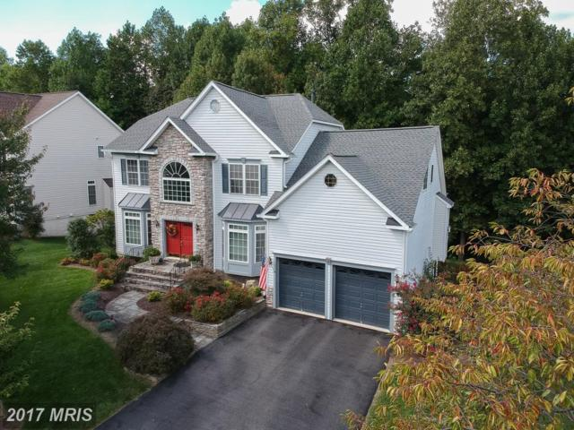 15 Ludwell Lane, Stafford, VA 22554 (#ST10054999) :: Pearson Smith Realty