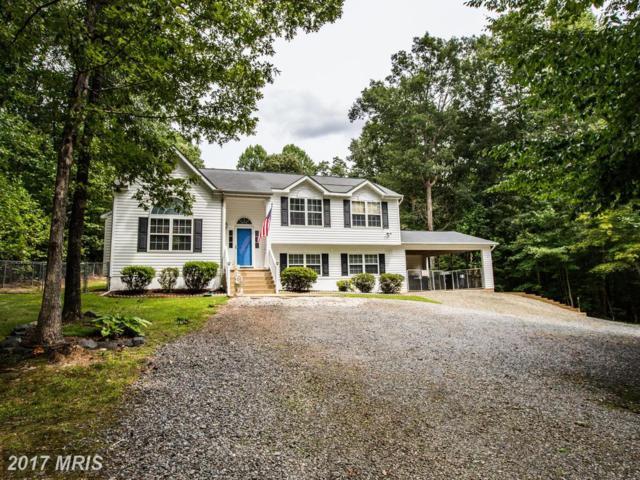 120 Cascade Lane, Fredericksburg, VA 22406 (#ST10055245) :: Pearson Smith Realty