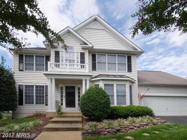 50 Basalt Drive, Fredericksburg, VA 22406 (#ST10057363) :: Pearson Smith Realty