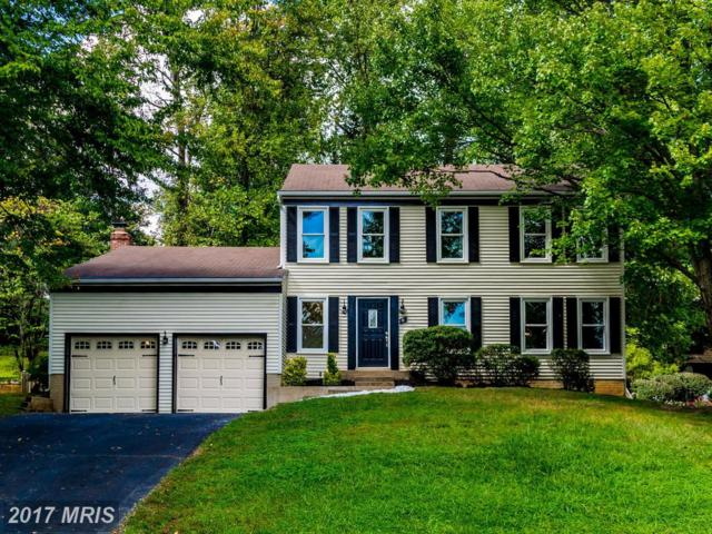 6 Snow Meadow Lane, Stafford, VA 22554 (#ST10057557) :: Pearson Smith Realty