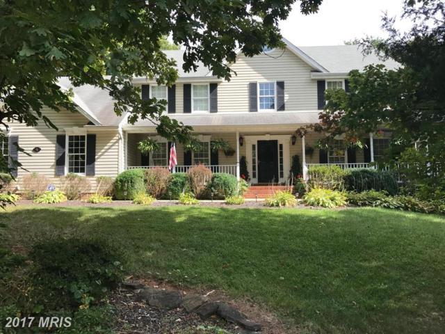 4 Trotter Lane, Fredericksburg, VA 22406 (#ST10060729) :: Pearson Smith Realty