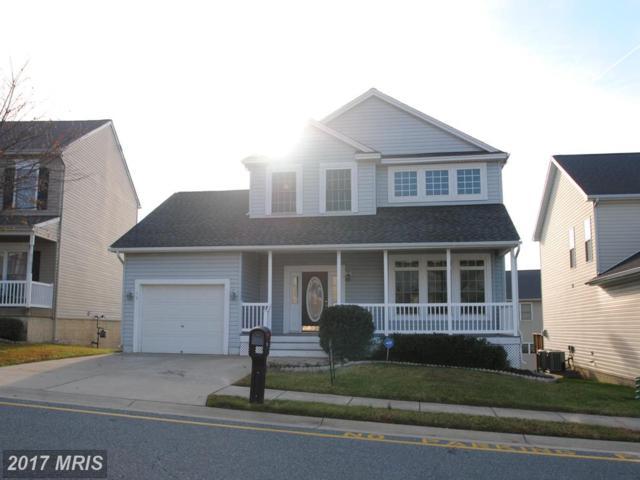 19 Carlsbad Drive, Stafford, VA 22554 (#ST10061188) :: Pearson Smith Realty