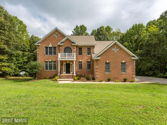 67 Indian View Court, Stafford, VA 22554 (#ST10062566) :: Wilson Realty Group