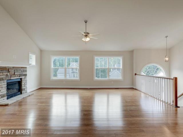 20 Fleetwood Farm Lane, Fredericksburg, VA 22405 (#ST10064725) :: Pearson Smith Realty