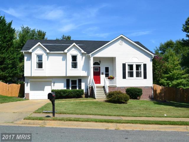2 Collen Road, Fredericksburg, VA 22406 (#ST10066547) :: LoCoMusings