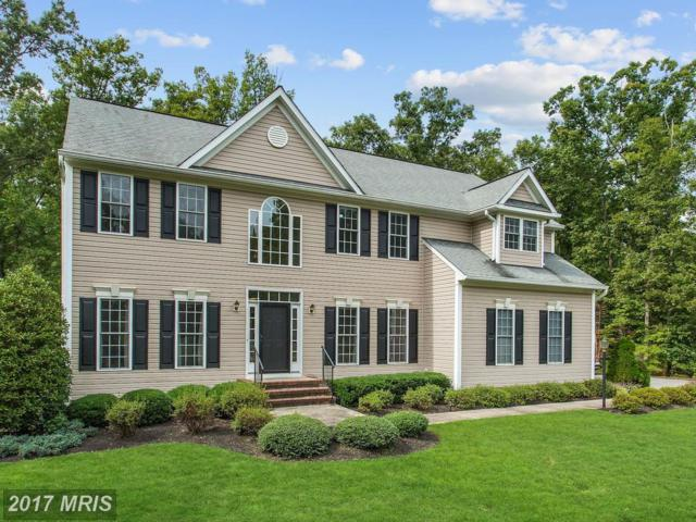 76 Town And Country Drive, Fredericksburg, VA 22405 (#ST10068443) :: LoCoMusings