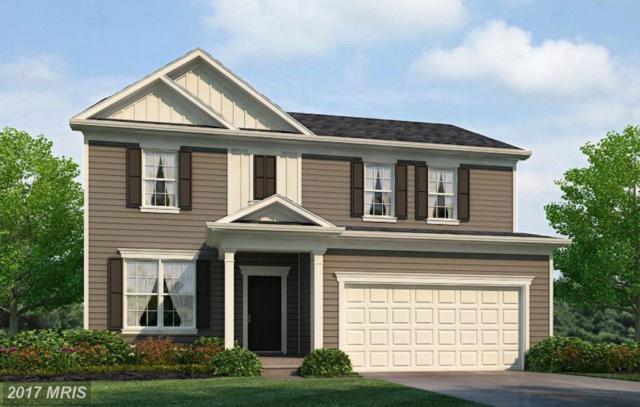 61 Bayside Lane, Fredericksburg, VA 22405 (#ST10071229) :: LoCoMusings