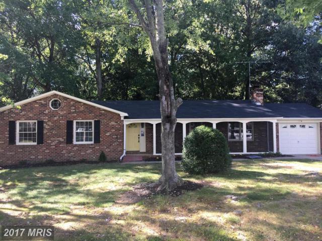 305 Sherri Lane, Fredericksburg, VA 22405 (#ST10074437) :: LoCoMusings