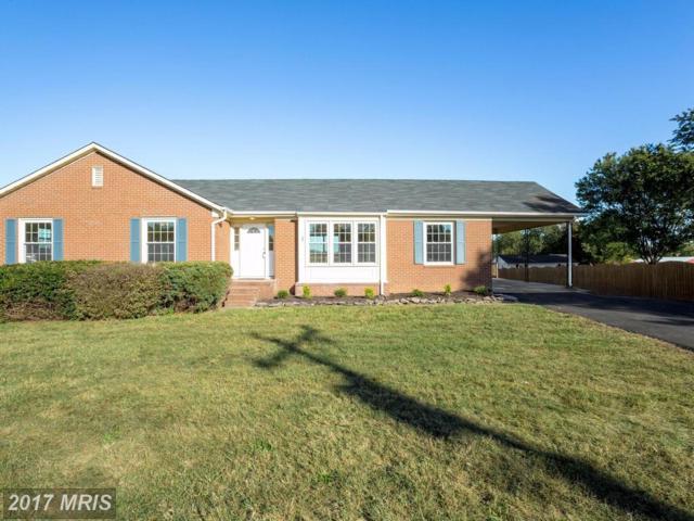 352 Poplar Road, Fredericksburg, VA 22406 (#ST10075797) :: LoCoMusings