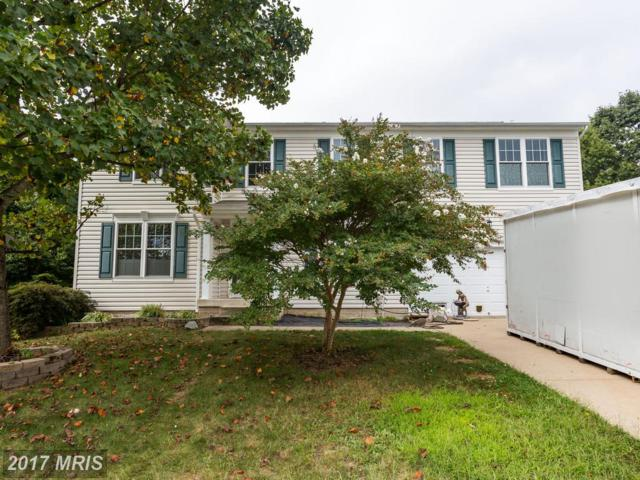 80 Limestone Way, Fredericksburg, VA 22406 (#ST10079967) :: The Belt Team