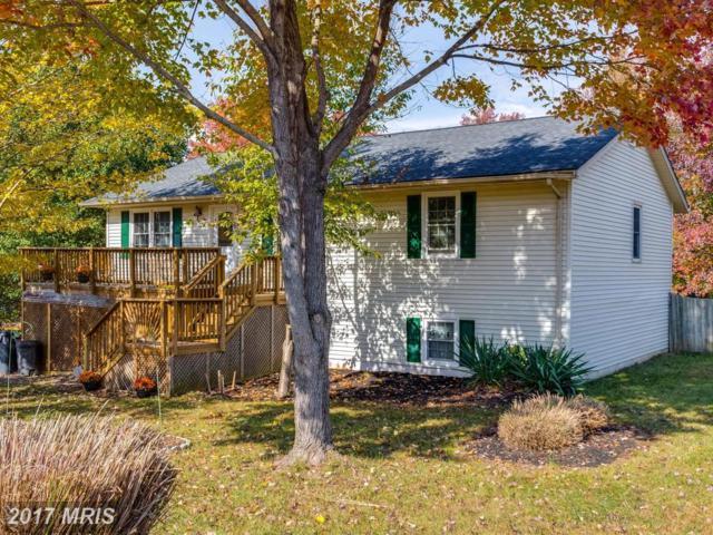 52 Vista Woods Road, Stafford, VA 22556 (#ST10097722) :: Pearson Smith Realty