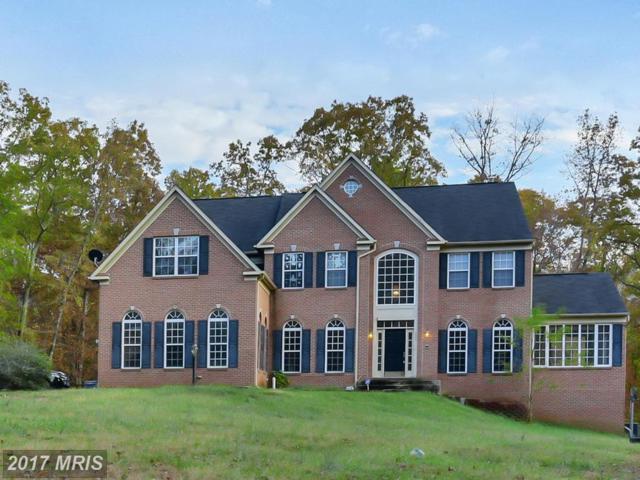 125 Rappahannock Drive, Fredericksburg, VA 22406 (#ST10098142) :: Pearson Smith Realty