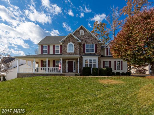 1 Brownfield Drive, Fredericksburg, VA 22405 (#ST10106227) :: The Nemerow Team
