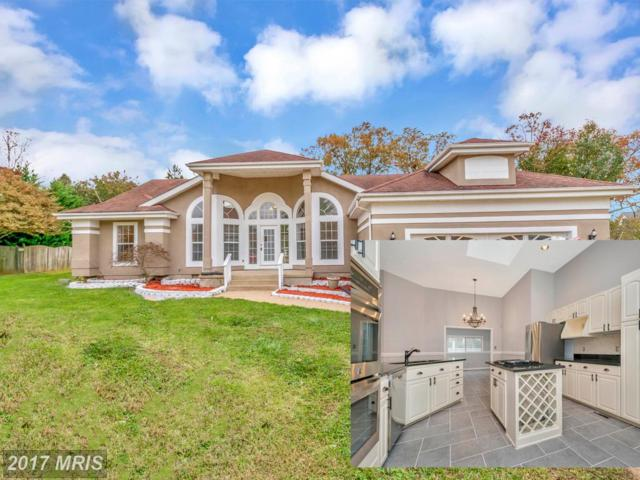 28 Pointe Lane, Fredericksburg, VA 22405 (#ST10107302) :: Colgan Real Estate