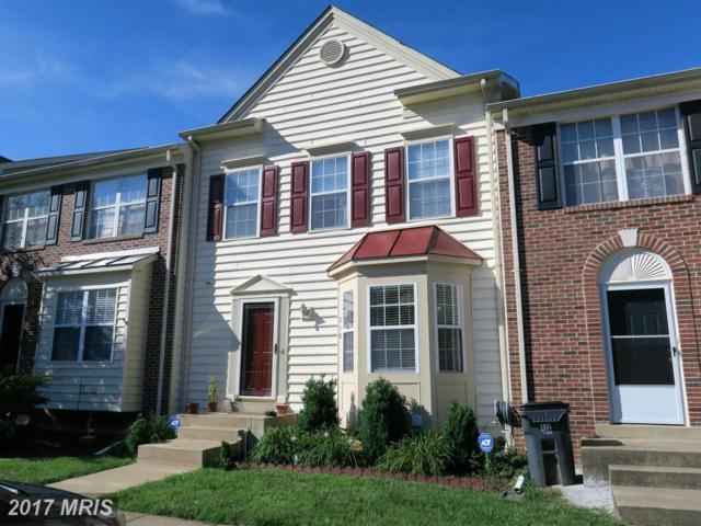310 Park Brook Court, Stafford, VA 22554 (#ST10107584) :: Wilson Realty Group