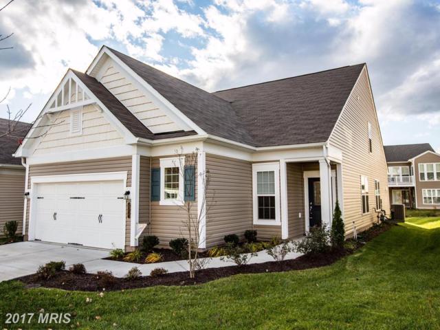 124 Denison Street, Fredericksburg, VA 22406 (#ST10107729) :: Wilson Realty Group