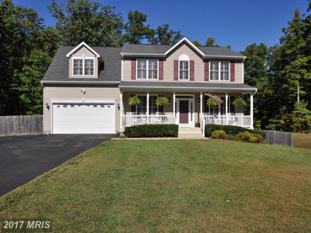 60 Goodwin Street, Fredericksburg, VA 22406 (#ST10107913) :: Wilson Realty Group