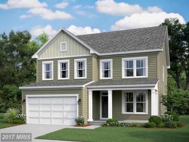 56 Reserve Way, Fredericksburg, VA 22406 (#ST10108045) :: Wilson Realty Group