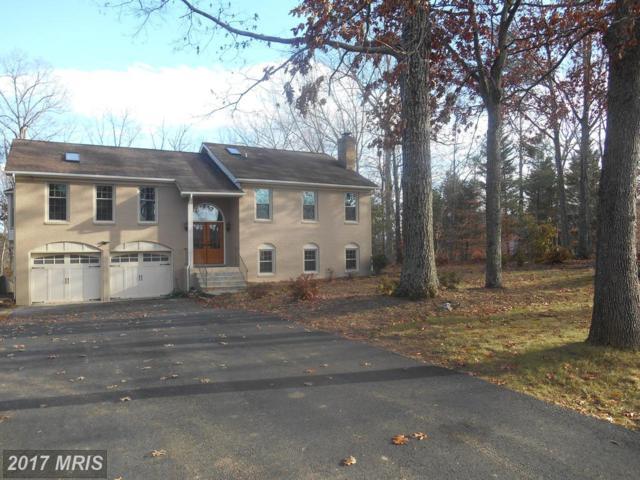 649 Cropp Road, Fredericksburg, VA 22406 (#ST10116174) :: RE/MAX Cornerstone Realty