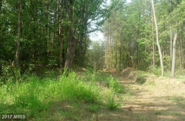 Lot 56-46 Sandy Ridge Road, Fredericksburg, VA 22405 (#ST10119124) :: Network Realty Group