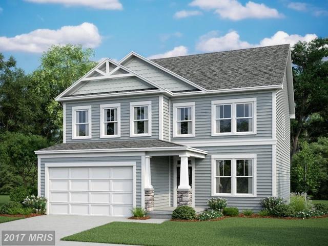 21 Cranes Bluff Court, Fredericksburg, VA 22405 (#ST10120815) :: Pearson Smith Realty