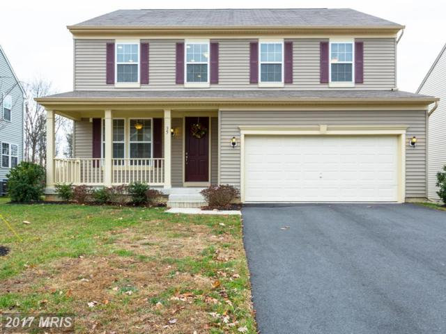 35 Daffodil Lane, Stafford, VA 22554 (#ST10121391) :: The Crews Team