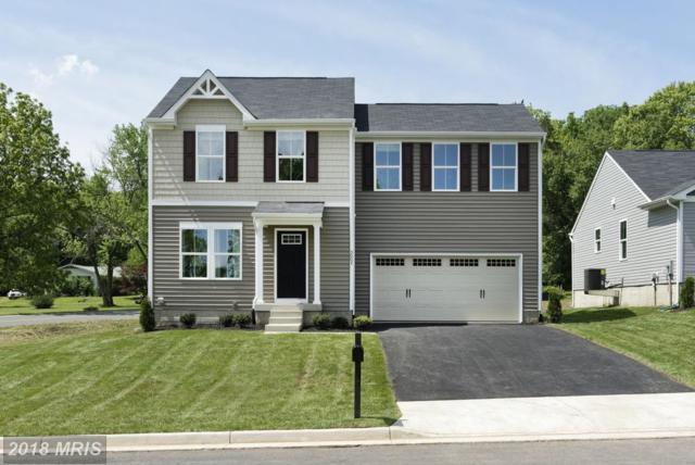 0001 Taylors Hill Way, Fredericksburg, VA 22405 (#ST10127891) :: The Gus Anthony Team
